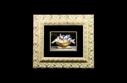 Colombe di Plinio – 16×22
